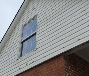 Lexington Hail Damaged Asphalt Shingles