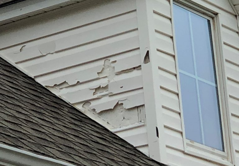 Hail Damaged Asphalt Shingles in Bismarck Missouri
